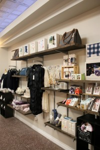 Not just bras! We carry a variety of clothing and nursing items for moms to be and new moms!